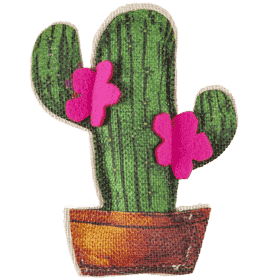Profumatore ECO Cactus Magnolia