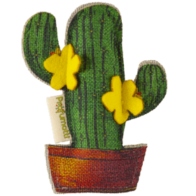 Profumatore Eco Cactus Cedro & Vaniglia
